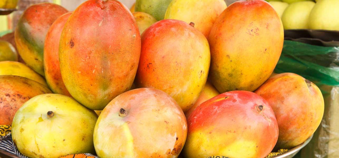 african-mango personne particulier